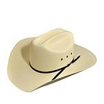 Шляпа BAILEY арт. S1404E RICHMAN (белый)