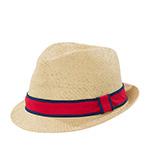 Шляпа GOORIN BROTHERS арт. 600-0003 (бежевый) {nat}